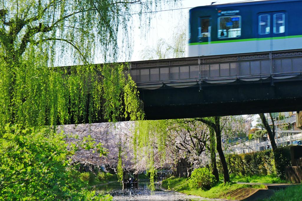 京阪電車と宇治川派流ののフリー写真素材
