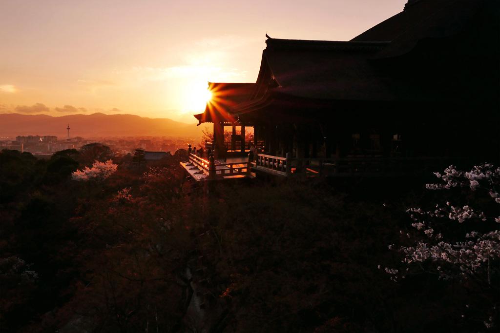 京都 清水寺 桜の写真素材