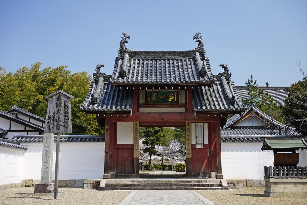 萬福寺の桜のフリー写真素材